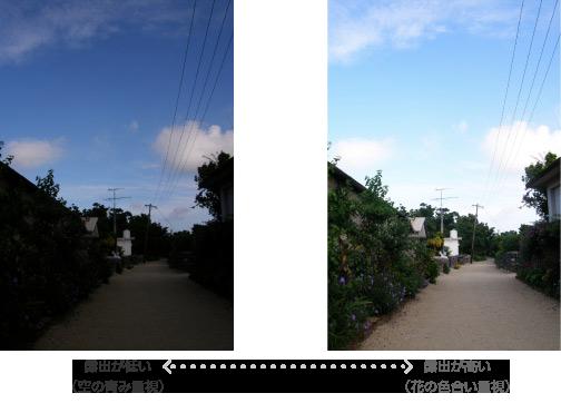 露出の高低による画像の違い