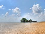 砂浜がフジツボみたいな@西表島