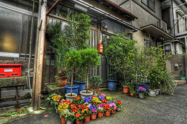 HDR(ハイダイナミックレンジ)玄関前の花園@京島