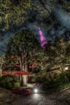 ハイダイナミックレンジ写真 - ピンクピンク東京タワー☆@赤羽橋