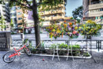 ハイダイナミックレンジ写真 - 駒沢通り沿いは被写体だらけ@恵比寿