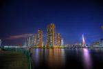 ハイダイナミックレンジ写真 - 越中島公園の夜景@月島