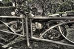 ハイダイナミックレンジ写真 - ガードレールとバイクと@西郷山公園