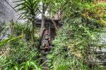ハイダイナミックレンジ写真 - 千年女優の地球