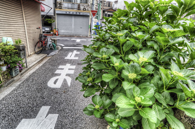 5月のストックフォト売り上げ報告〜