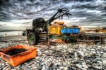 ハイダイナミックレンジ写真 - 自堕落な日々とムチ