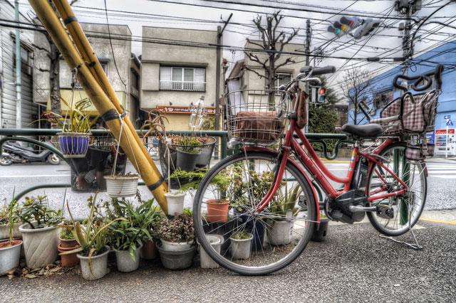 宝物通り駒沢通り