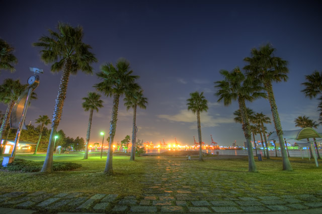 HDR(ハイダイナミックレンジ)Photomatixセッティングとヤシの木夜景@潮風公園park12.jpg