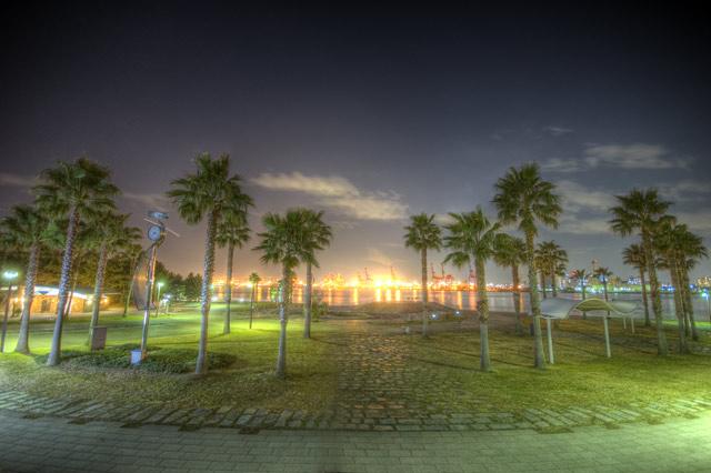 HDR(ハイダイナミックレンジ)ヤシの木と対岸の建設中HIDランプ@潮風公園park13.jpg