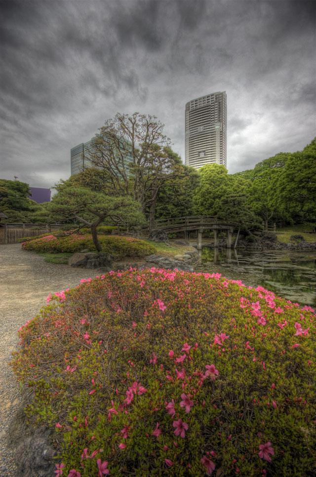 HDR(ハイダイナミックレンジ)つつじとビルと庭と@浜離宮恩賜庭園park48.jpg