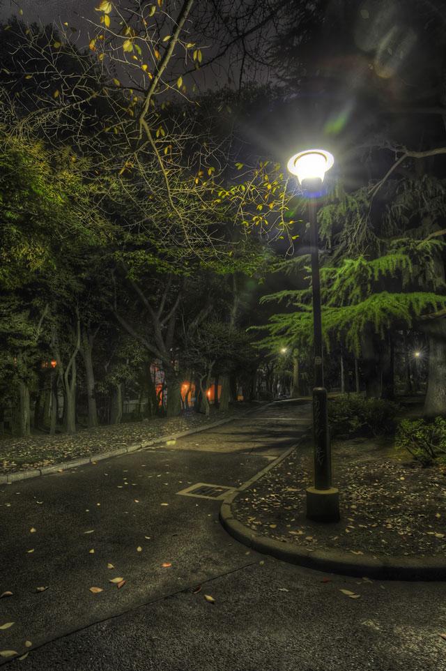 夜の街灯@世田谷公園