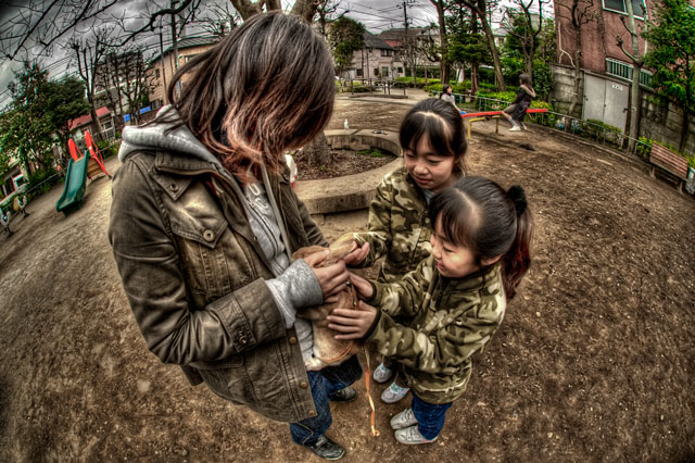 HDR(ハイダイナミックレンジ)子供がワラワラ近所の公園@中目黒