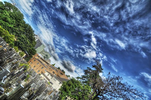 イギリスしゃちほこ雲