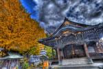 正覚寺と銀杏と@中目黒