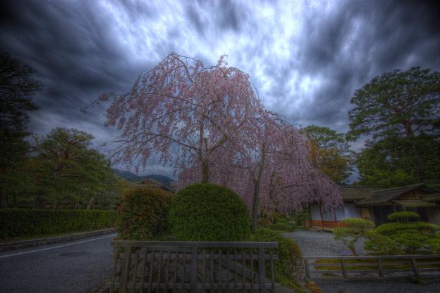 HDR(ハイダイナミックレンジ)南禅寺からパッと出てサっと曲がったところ@京都temple75.jpg