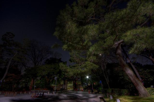 HDR(ハイダイナミックレンジ)御苑パトカーが徘徊する中@京都trees26.jpg