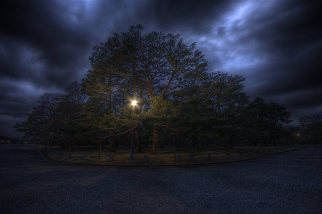 HDR(ハイダイナミックレンジ)夕暮れ時@京都御苑trees33.jpg