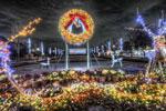 ハイダイナミックレンジ写真 - イルミネーションHDR@国営昭和記念公園