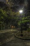ハイダイナミックレンジ写真 - 夜の街灯@世田谷公園