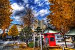 ハイダイナミックレンジ写真 - 鮮やかな色・色・色@中目黒正覚寺