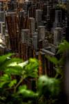 ハイダイナミックレンジ写真 - 雨を余裕で収めるHDR@中目黒自宅